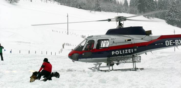20120209-alpini1
