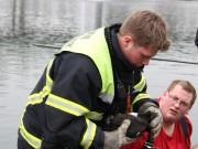 05-04-2013 memmingen neue-welt-weiher kleintierrettung feuerwehr-memmingen pöppel facts-eu20130405 titel