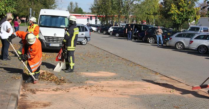 18-10-2013 bab-a7 rastanlage-illertal-west umweltdelikt feuerwehr-dettingen poeppel new-facts-eu20131018 titel