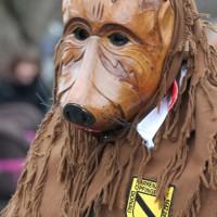 01-02-2014_biberach_tannheim-narrenumzug_fascing_masken_narrenzunft-tannheim_poeppel_new-facts-eu20140201_0067