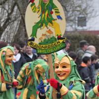 01-02-2014_biberach_tannheim-narrenumzug_fascing_masken_narrenzunft-tannheim_poeppel_new-facts-eu20140201_0100