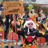 01-02-2014_biberach_tannheim-narrenumzug_fascing_masken_narrenzunft-tannheim_poeppel_new-facts-eu20140201_0133