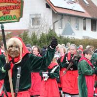 01-02-2014_biberach_tannheim-narrenumzug_fascing_masken_narrenzunft-tannheim_poeppel_new-facts-eu20140201_0201