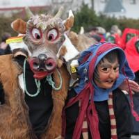 01-02-2014_biberach_tannheim-narrenumzug_fascing_masken_narrenzunft-tannheim_poeppel_new-facts-eu20140201_0218