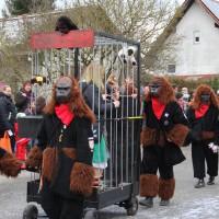 01-02-2014_biberach_tannheim-narrenumzug_fascing_masken_narrenzunft-tannheim_poeppel_new-facts-eu20140201_0323