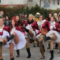 01-02-2014_biberach_tannheim-narrenumzug_fascing_masken_narrenzunft-tannheim_poeppel_new-facts-eu20140201_0337