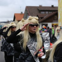 01-03-2014_ostallgaeu_biessenhofen_faschingsumzug-2014_bringezu_new-facts-eu20140301_0010
