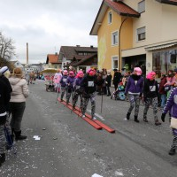 01-03-2014_ostallgaeu_biessenhofen_faschingsumzug-2014_bringezu_new-facts-eu20140301_0064
