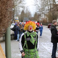 01-03-2014_ostallgaeu_biessenhofen_faschingsumzug-2014_bringezu_new-facts-eu20140301_0113