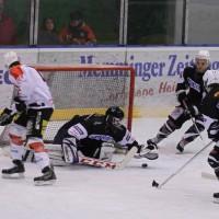 02-02-2014_eishockey_bayernliga-indians_ecdc-memmingen_esc-hassfurt_fuchs_new-facts-eu20140202_0034
