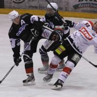 02-02-2014_eishockey_bayernliga-indians_ecdc-memmingen_esc-hassfurt_fuchs_new-facts-eu20140202_titel