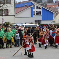 03-02-2014_ravensburg_bad-wurzach_narrensprung_umzug_poeppel_new-facts-eu20140303_0002