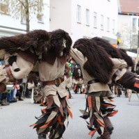 03-02-2014_ravensburg_bad-wurzach_narrensprung_umzug_poeppel_new-facts-eu20140303_0047