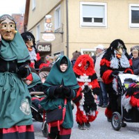 03-02-2014_ravensburg_bad-wurzach_narrensprung_umzug_poeppel_new-facts-eu20140303_0140