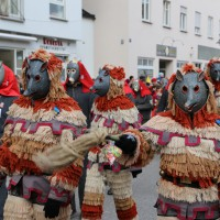 03-02-2014_ravensburg_bad-wurzach_narrensprung_umzug_poeppel_new-facts-eu20140303_0174