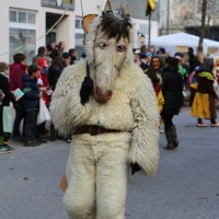 03-02-2014_ravensburg_bad-wurzach_narrensprung_umzug_poeppel_new-facts-eu20140303_0311