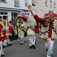 03-02-2014_ravensburg_bad-wurzach_narrensprung_umzug_poeppel_new-facts-eu20140303_0318