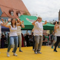 10-05-2014_memmingen_blumenkoenigin_memmingen-blueht_tanz-fest_poeppel_new-facts-eu0054