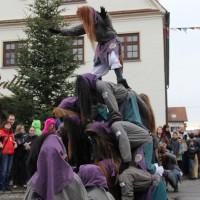 12-01-2014_biberach_erolzheim_7-narrensprung_umzug_fasching_fasnet_poeppel_new-facts-eu20140112_0014