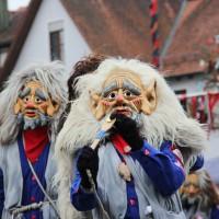 12-01-2014_biberach_erolzheim_7-narrensprung_umzug_fasching_fasnet_poeppel_new-facts-eu20140112_0027
