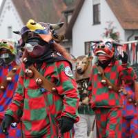 12-01-2014_biberach_erolzheim_7-narrensprung_umzug_fasching_fasnet_poeppel_new-facts-eu20140112_0049