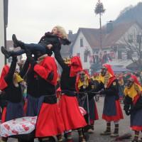 12-01-2014_biberach_erolzheim_7-narrensprung_umzug_fasching_fasnet_poeppel_new-facts-eu20140112_0057
