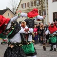 12-01-2014_biberach_erolzheim_7-narrensprung_umzug_fasching_fasnet_poeppel_new-facts-eu20140112_0091