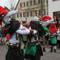 12-01-2014_biberach_erolzheim_7-narrensprung_umzug_fasching_fasnet_poeppel_new-facts-eu20140112_0092