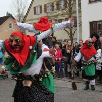 12-01-2014_biberach_erolzheim_7-narrensprung_umzug_fasching_fasnet_poeppel_new-facts-eu20140112_0093