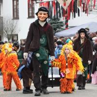 12-01-2014_biberach_erolzheim_7-narrensprung_umzug_fasching_fasnet_poeppel_new-facts-eu20140112_0156