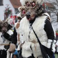 12-01-2014_biberach_erolzheim_7-narrensprung_umzug_fasching_fasnet_poeppel_new-facts-eu20140112_0226