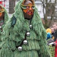12-01-2014_biberach_erolzheim_7-narrensprung_umzug_fasching_fasnet_poeppel_new-facts-eu20140112_0235