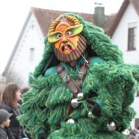 12-01-2014_biberach_erolzheim_7-narrensprung_umzug_fasching_fasnet_poeppel_new-facts-eu20140112_0237