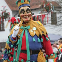 12-01-2014_biberach_erolzheim_7-narrensprung_umzug_fasching_fasnet_poeppel_new-facts-eu20140112_0260
