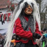 12-01-2014_biberach_erolzheim_7-narrensprung_umzug_fasching_fasnet_poeppel_new-facts-eu20140112_0295
