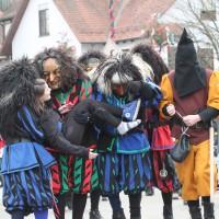 12-01-2014_biberach_erolzheim_7-narrensprung_umzug_fasching_fasnet_poeppel_new-facts-eu20140112_0355