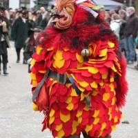 12-01-2014_biberach_erolzheim_7-narrensprung_umzug_fasching_fasnet_poeppel_new-facts-eu20140112_0361