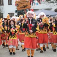 12-01-2014_biberach_erolzheim_7-narrensprung_umzug_fasching_fasnet_poeppel_new-facts-eu20140112_0390
