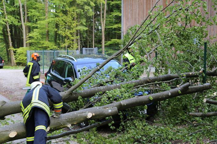 11-05-2014 unterallgaeu feuerwehr-schlegelsberg baum-pkw poeppel new-facts-eu titel