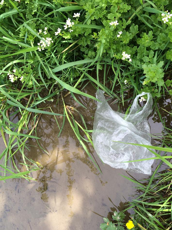 Laut der Deutschen Umwelthilfe werden in Europa nur 7 von 10 Plas-tiktüten recycelt. - Foto: Kreisabfallwirtschaft Günzburg