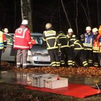 26-12-2013_memmingen_volkratshofen_ferthofen_pkw-baum_unfall_poeppel_new-facts-eu20131226_0017