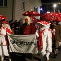 28-02-2014_biberach_ochsenhausen_fasching_nachtumzug-2014_poeppel_new-facts-eu20140228_0020