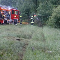 29-05-2014_a7_illertissen_voehringen_rudelsberger-forst_unfall_mutter_kind_feuerwehr_wis_new-facts-eu_0010
