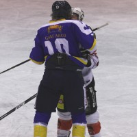 29-11-2013_ecdc-memmingen_eishockey_indians_ehc-waldkraigburg_bel_fuchs_new-facts-eu20131129_0022