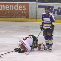 29-11-2013_ecdc-memmingen_eishockey_indians_ehc-waldkraigburg_bel_fuchs_new-facts-eu20131129_0044