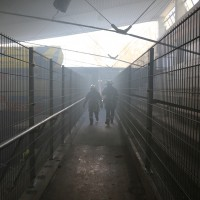 30-11-2013_ostallgau_kaufbeuren_katastrophenschutzteilubung_eisstadion_ammoniak_bringezu_new-facts-eu20131130_0020