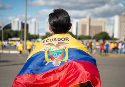 Fan aus Ecuador bei der Fußball-WM 2014, Marcelo Camargo/Agência Brasil, Lizenztext: dts-news.de/cc-by