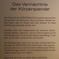 02-07-2014-muenchen-ausstellung-koerperwelten-hagen-poeppel-new-facts-eu (4)