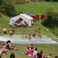 20-07-2014-biberach-haslacher-seenachtsfest-fischerstechen- wettbewerb-poeppel-bringezu-new-facts-eu20140720_0088
