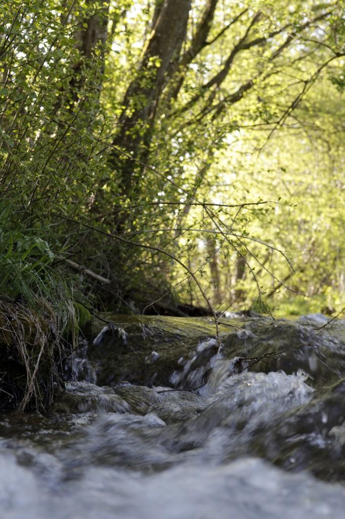 Wasser darf für den gewerblichen Gebrauch nicht ohne behördliche Genehmigung aus Bächen und Seen entnommen werden. Unser Bild zeigt den idyllischen Mühlbach bei der Ehwiesmühle bei Wolfertschwenden. Foto: Stefanie Vögele/Landratsamt